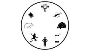 Moral Circle
